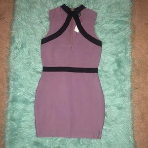 NWT Windsor plum & black mini dress   size L